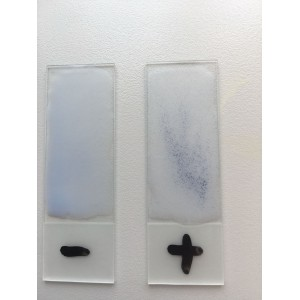 Triple Quik Test (Salmonella+Brucella+Proteus)